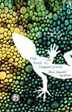 Front cover for the book The Book of Chameleons by Jose Eduardo Agualusa