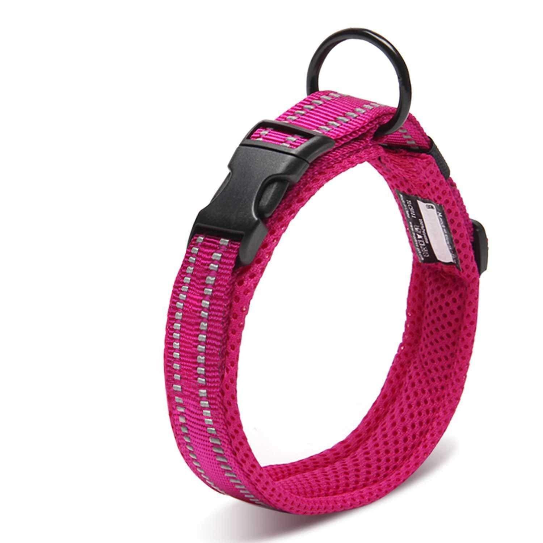 Mejor valorados en Collares para perros & Opiniones útiles de ...