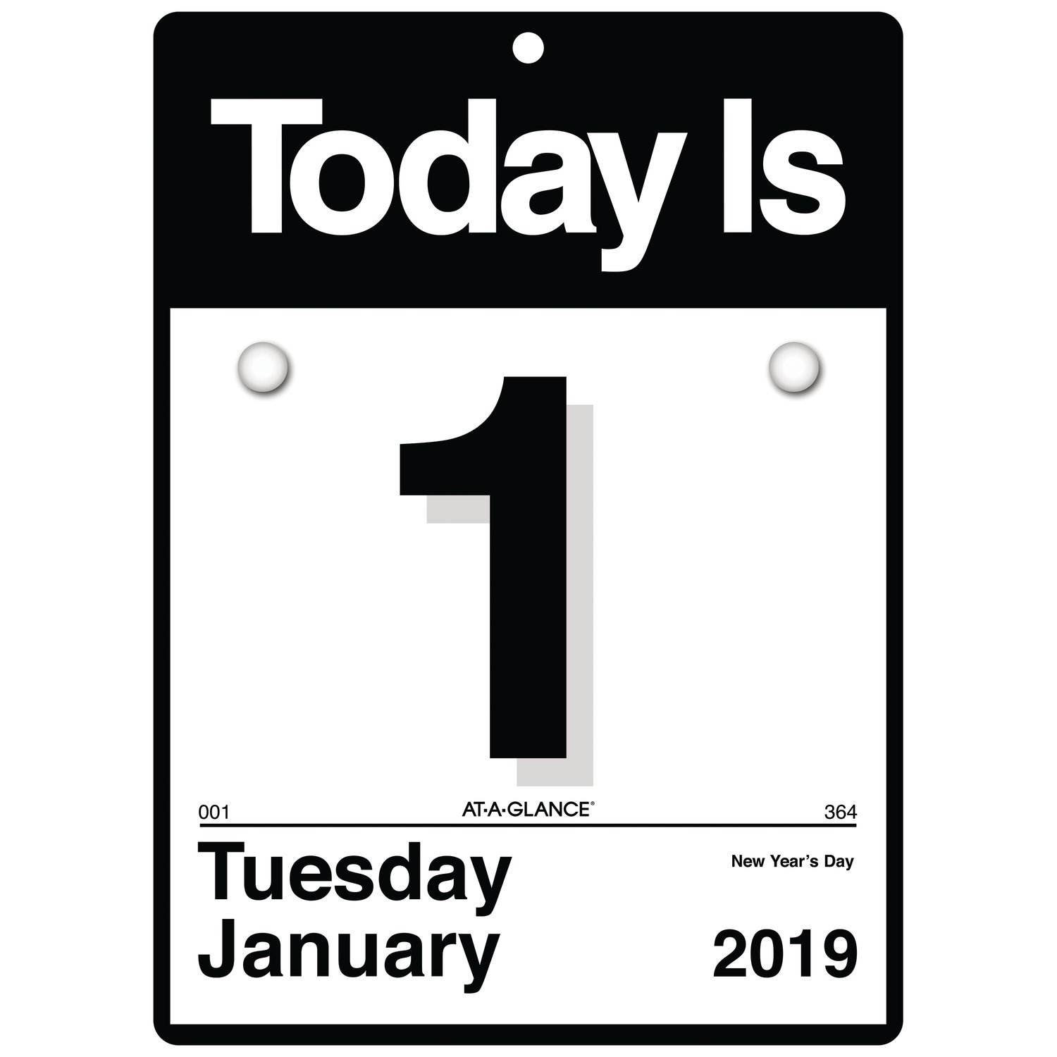 AT-A-GLANCE 2019 Daily Wall Calendar, 6'' x 6'', Mini, One Page Per Day, ''Today Is'' Design (K1-00)