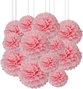 Aimto 12pcs Light Pink Paper Pom Poms Decorations for Party Ceiling Wall Hanging Tissue Flowers Decorations - 1 Color of 12 Inch, 10 Inch