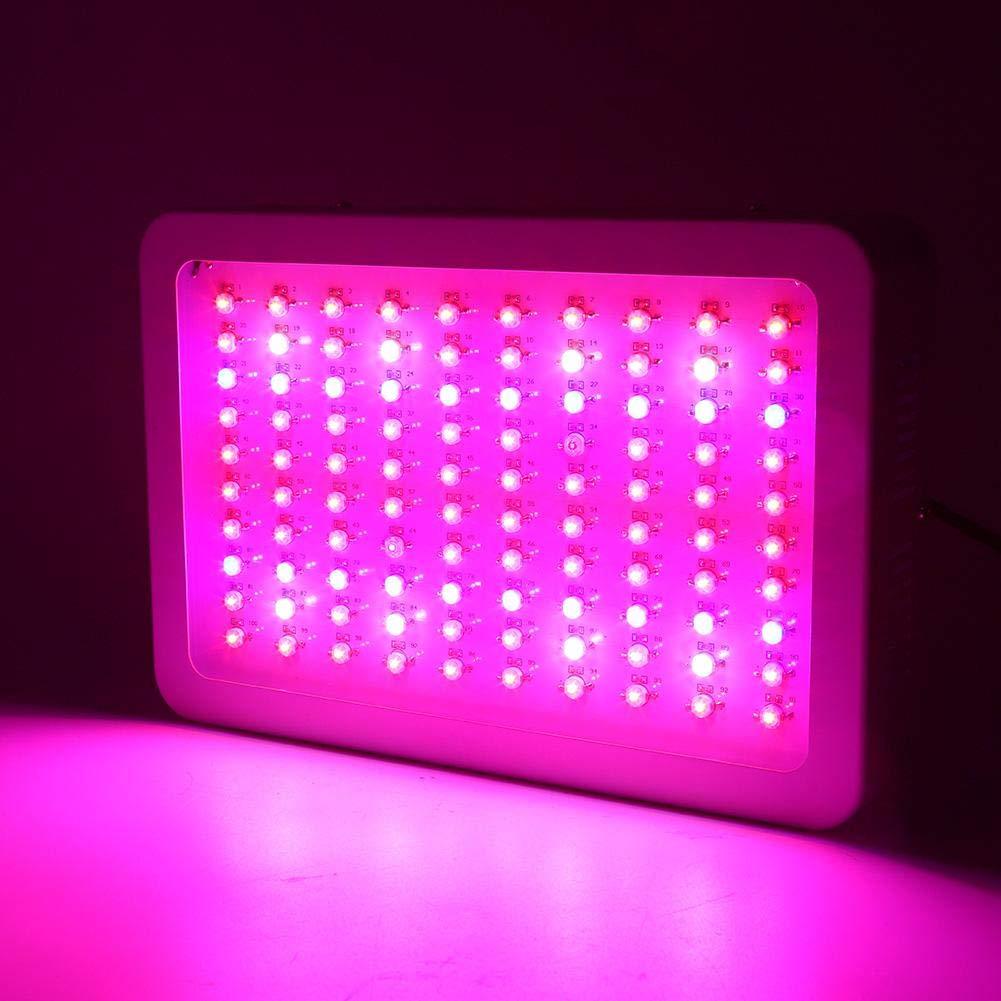 1000W LED Horticole Lampe Plein Spectre pour la Serre et les Hydroponiques dInt/érieur Florissant Led de Croissance Floraison Led Culture Indoor Plante Hydroponique /éclairage Germination