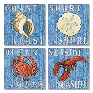 61uOFL0LjpL._SS300_ Best Sand Dollar Wall Art and Sand Dollar Wall Decor For 2020