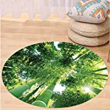 VROSELV Custom carpetBamboo House Decor Collection Low Angle View of Bamboo Tree Tops Asian Zen Tranquil Lands Jungle Meditation Spa Theme Bedroom Living Room Dorm Green Round 79 inches
