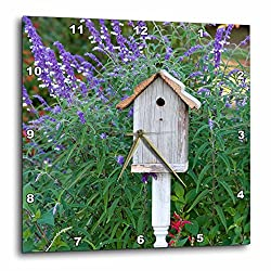 3dRose Birdhouse in Garden with Mexican Bush Pineapple Sage Wall Clock, 10x10,