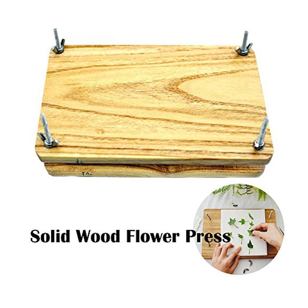 Wooden Art Kit Outdoor Play Learning Toy for 5 STAR-TOP Students Flower /& Leaf Press Years Old Kids or Adult with Tools and Dry Papers