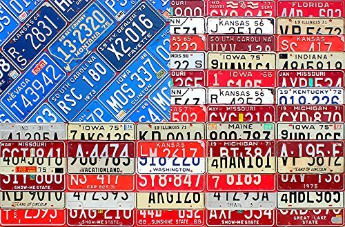 License Plate Art American Flag by DesignTurnpike