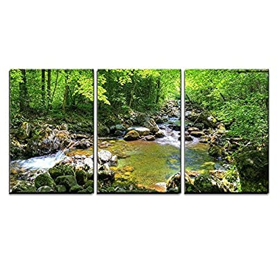 3 Piece Canvas Wall Art - Beautiful Landscape/Scenery Forest Stream Smolny in Russian Primorye Reserve in Autumn - Modern Home Art Stretched and Framed Ready to Hang - 16