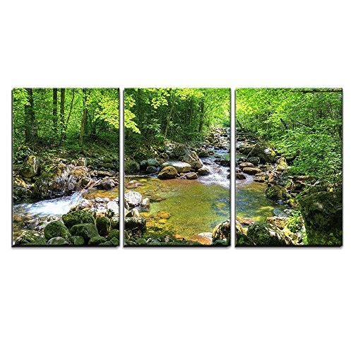 (wall26 - 3 Piece Canvas Wall Art - Beautiful Landscape/Scenery Forest Stream Smolny in Russian Primorye Reserve in Autumn - Modern Home Decor Stretched and Framed Ready to Hang - 24