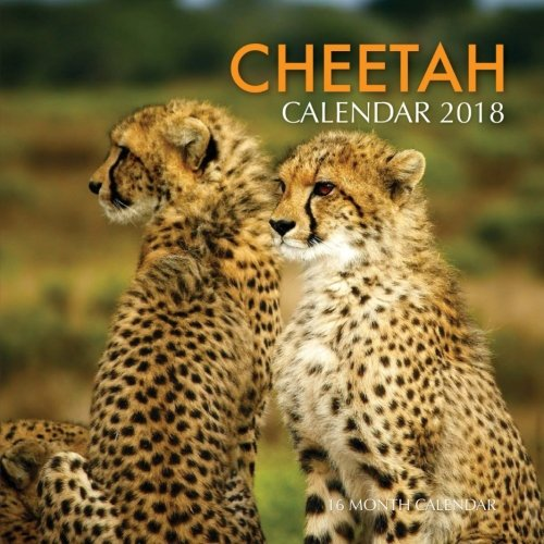 Download Cheetah Calendar 2018: 16 Month Calendar pdf epub