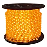 150ft Orange LED Rope Light - 1/2 in. Dia. 2 Wire