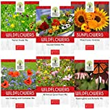 Wildflower Seeds Bulk Variety Pack - 6 Large Packets - 6 Different Mixes - 30,000+ Open Pollinated Seeds