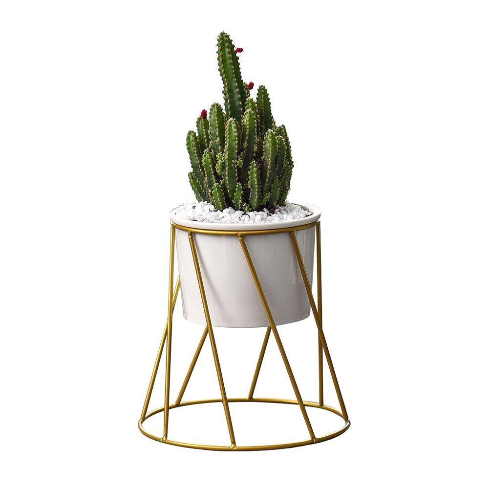 Planter Pots Indoor,Y&M(TM) 6.2 inch Mid Century Modern Planter Round Plant Pots with Metal Rack for Succulent Planter Cactus (White+Gold)