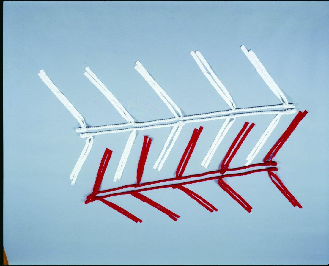 運動会用品 ムカデロープ 50人用 17.1m ( 赤 ) 大好評!! *縛りテープは足に優しく水にも強いアクリルスパンを使用しています B00KPKE8GC