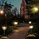 Sunwind Outdoor Solar Pathway Lights - 6 Pack Square Waterproof Garden Path Lights Solar Powered For Patio Lawn Backyard Landscaping Lighting
