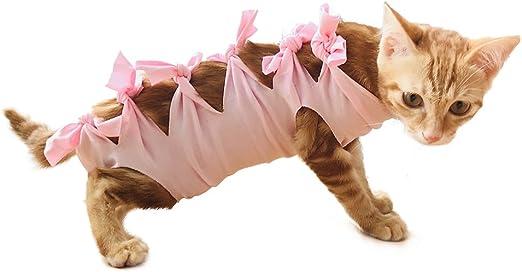 FIRIK Traje de Recuperación para Mascotas de Algodón Profesional Esterilización Operación Ropa para Gatos y Perros Rosa XS: Amazon.es: Productos para mascotas
