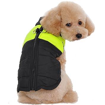 Treat Me Moderno Abrigo para Perros, Ropa para Perros de Invierno,Chaqueta para Perro: Amazon.es: Deportes y aire libre