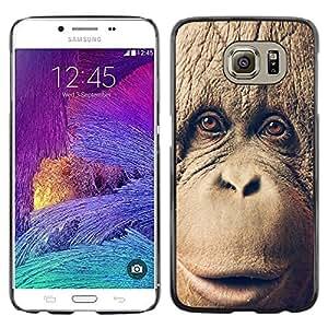 ROKK CASES / Samsung Galaxy S6 SM-G920 / CHIMP CHIMPANZEE MONKEY / Delgado Negro Plástico caso cubierta Shell Armor Funda Case Cover