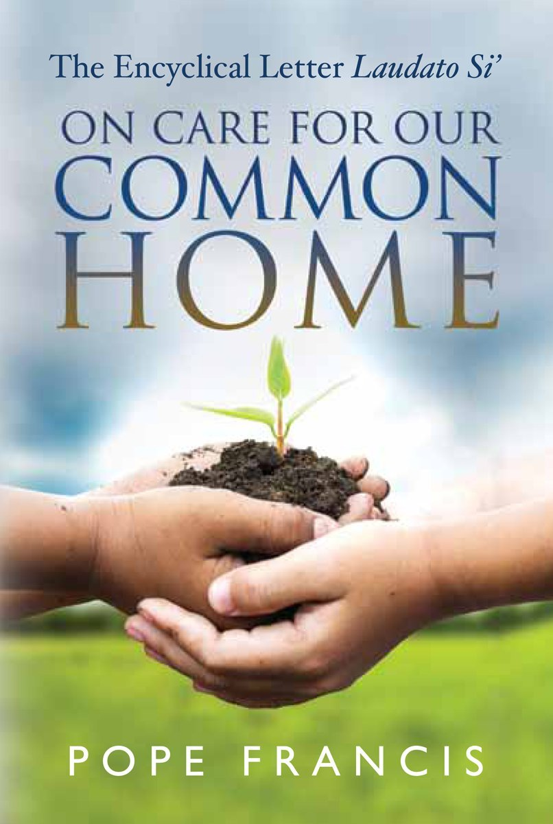 on care for our common home the encyclical letter laudato si pope francis 9780809149803 amazoncom books