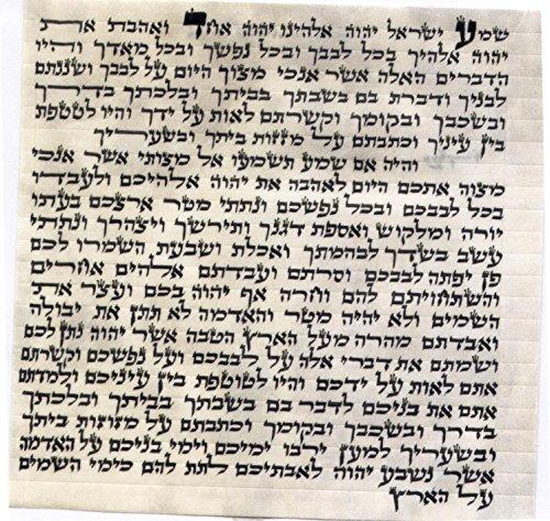 (Judaica Kosher 7cm Mezuzah Scroll 2.8 Inch klaf Mezuza)