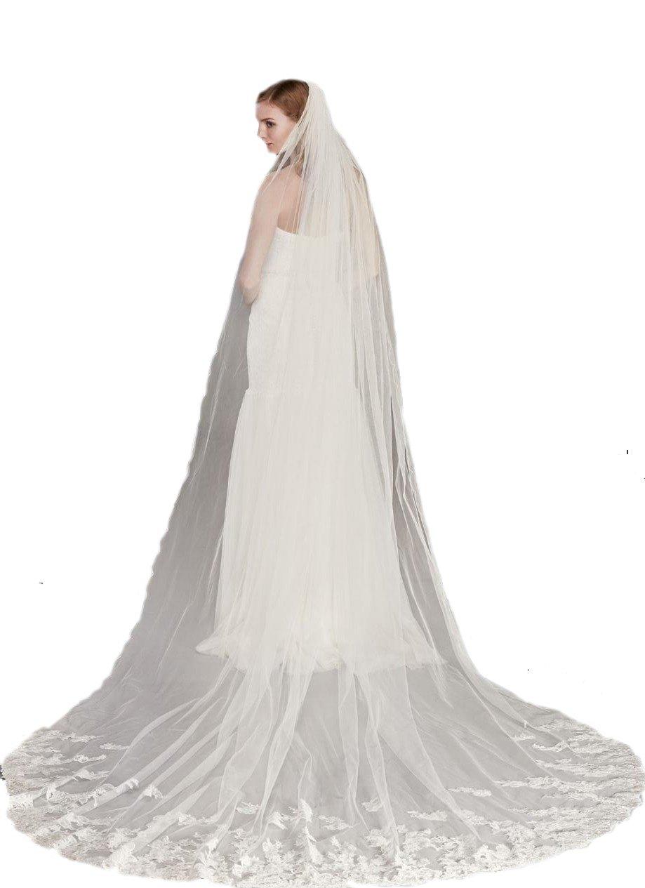 Passat Diamond White Single-Tier 3M Cathedral Metallic Lace Wedding Veil with Pencil Edge DB126