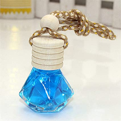 Amazon.com: FTQCGZ - Colgante de perfume para coche, botella ...