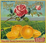 Redlands Rose Flowers Orange Citrus Fruit Crate Box Label Art Print