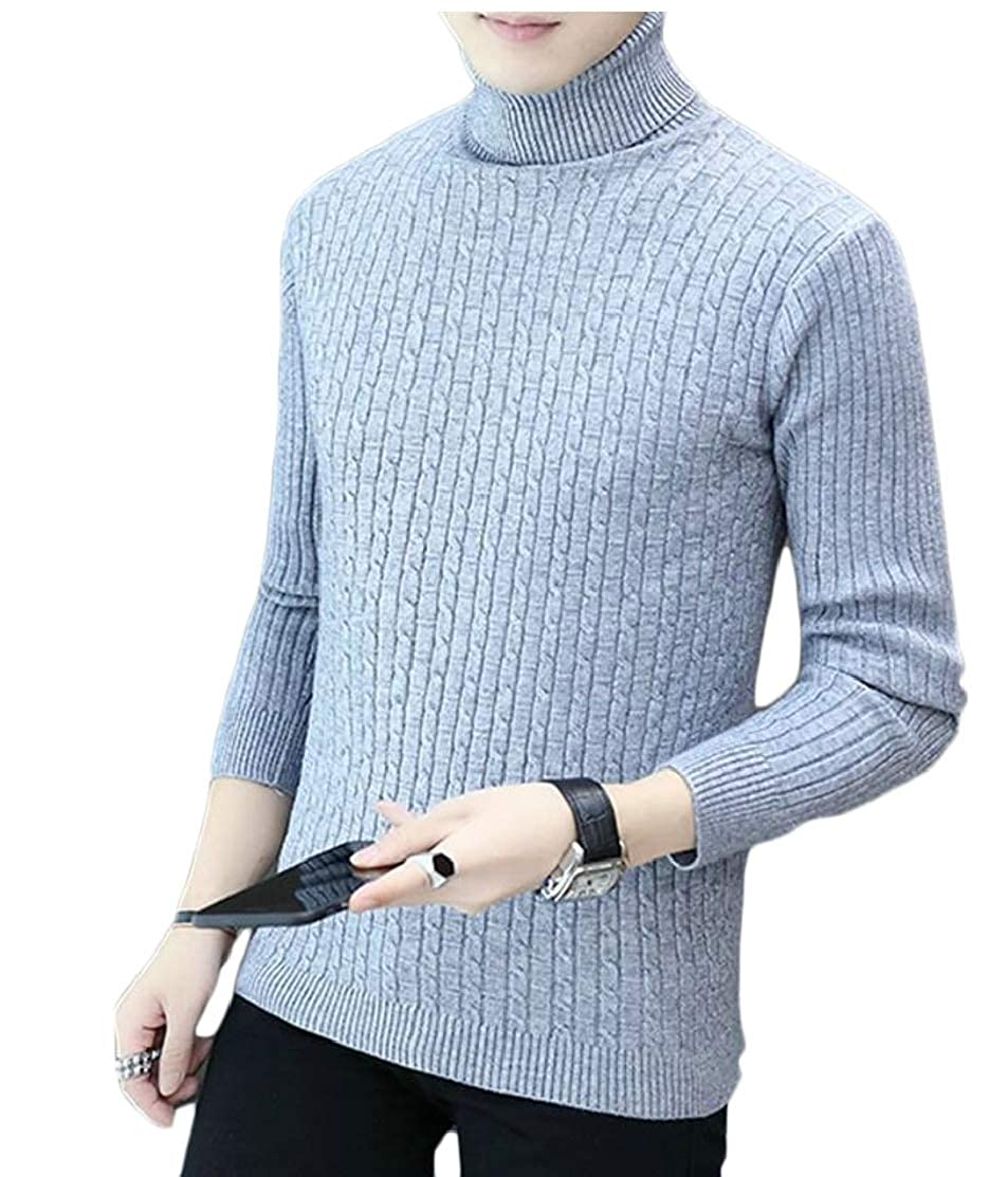 CYJ-shiba Mens Classic Turtleneck Twisted Long Sleeve Knitted Pullover Sweaters