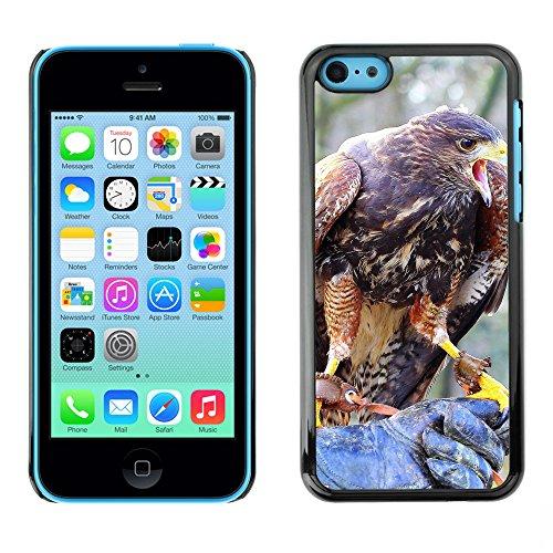 Premio Sottile Slim Cassa Custodia Case Cover Shell // F00018160 oiseau jeu // Apple iPhone 5C