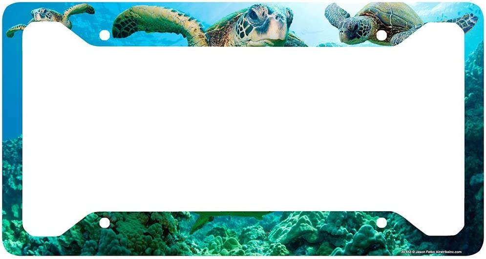 Chawuux Auto License Plate Frame Sea Turtle License Plate Frame