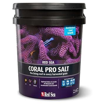 Sea Coral, Taille Unique