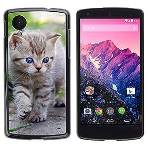 Carcasa Funda Case // V0000902 Cat Kitty Animal Pattern // LG NEXUS 5