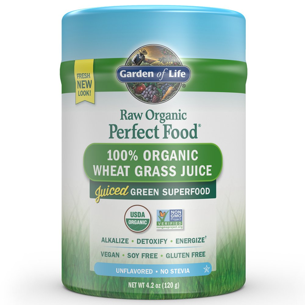 Garden of Life Vegan Green Superfood Powder - Raw Organic Perfect Whole Food Wheat Grass Dietary Supplement, 4.2oz (120g) Powder