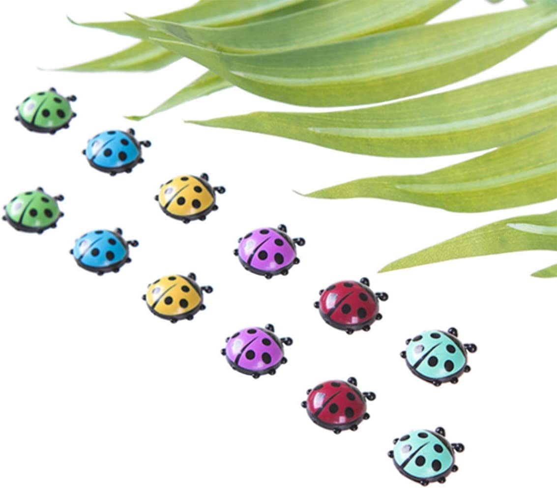 TabEnter 12 Pcs Cute Mini Ladybug Shape Decorative Refrigerator Magnets, Perfect Fridge Magnets for House Office Personal Use