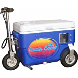 500W Electric Scooter Cooler Color: Blue