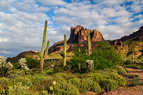 Tinggly.com Apache Trail & Dolly Steamboat Experience for Two in Arizona - image