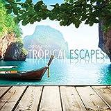 2018 Tropical Escapes Wall Calendar