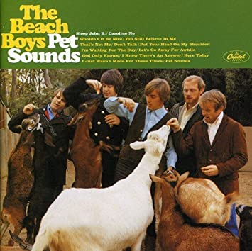 Image result for pet sounds beach boys