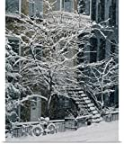 Yves Marcoux Poster Print entitled Drolet Street In Winter, Montreal, Quebec, Canada