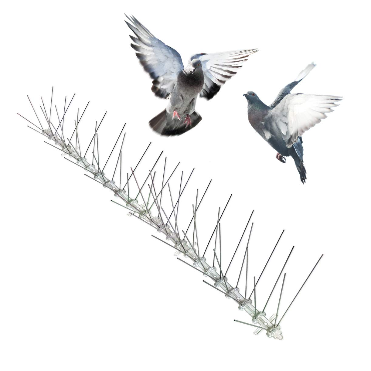 Bird-X Stainless Steel Bird Spikes Narrow, Covers 50 feet by Bird-X