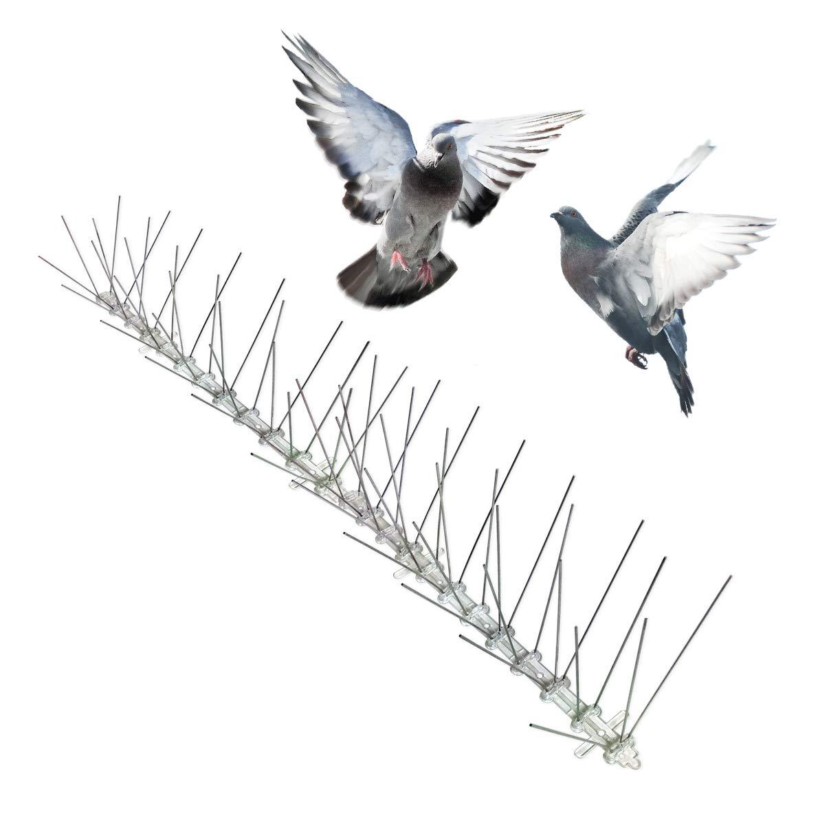 Bird-X Stainless Steel Bird Spikes, Covers 100 feet by Bird-X
