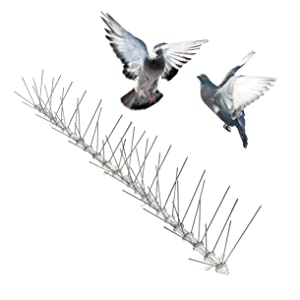 Bird-X Stainless Steel Bird Spikes Narrow, Covers 50 feet