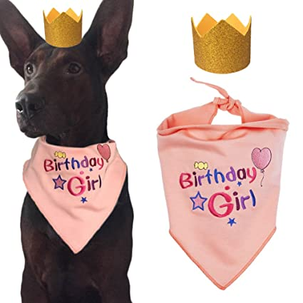Ggkidsfunpet Dog Birthday Bandana Triangle Bibs Scarf Accessories Party Hat