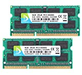 DUOMEIQI 8GB Kit(2X 4GB) DDR3 2RX8 PC3-8500S 1066MHz 204pin 1.5v SODIMM Notebook Laptop Memory RAM Modules with