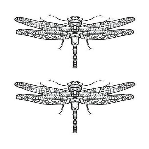 adgkitb 5piezas Pegatina de Tatuaje Temporal de libélula ...