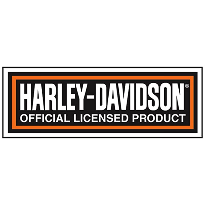 Harley-Davidson Chrome Willie G skull HD Wordmark & Flames Key chain