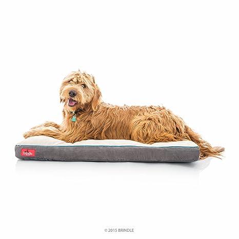 Brindle Perro de Espuma de Memoria Suave Cama con Funda Lavable – 40 in x 26
