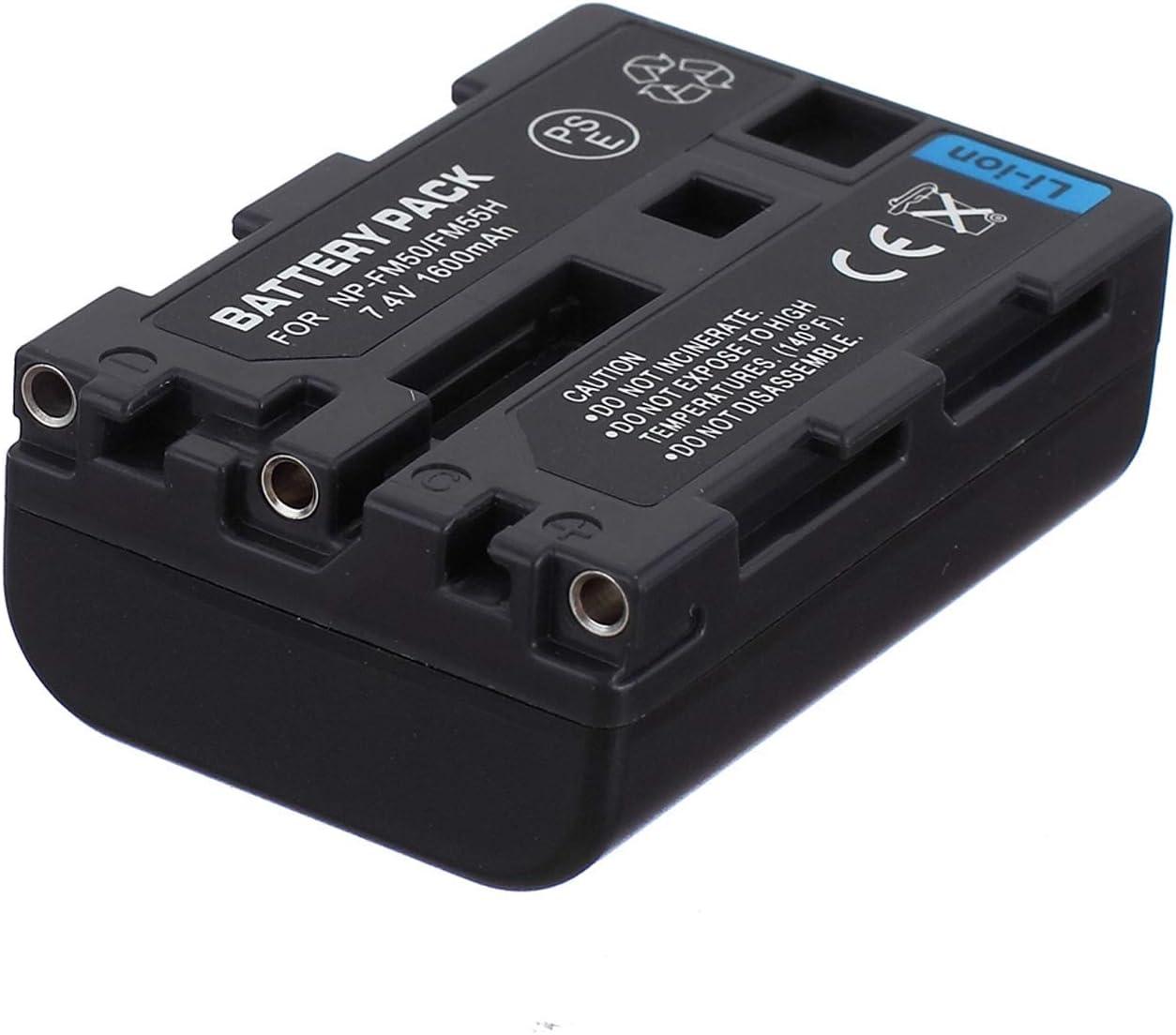 DCR-TRV70E DCR-TRV75E USB Dual Battery Charger for Sony DCR-TRV60E DCR-TRV80E MiniDV Handycam Camcorder
