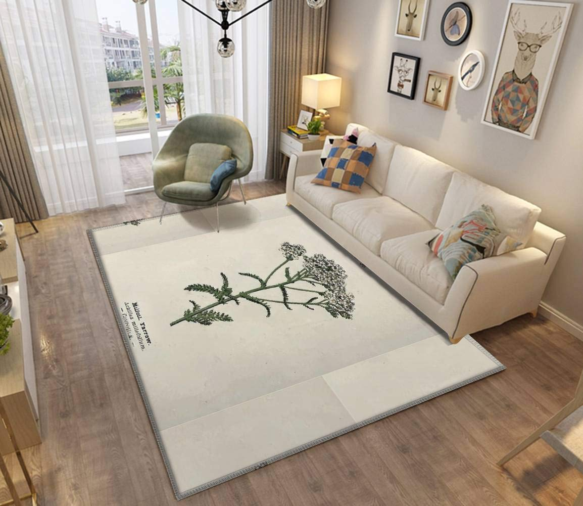 Wayside and Woodland Blossoms a Pocket Guide to British Wild Flowers Area Rugs Non-Slip Floor Mat Doormats Home Runner Rug Carpet for Bedroom Indoor Outdoor Kids Play Mat Nursery Throw Rugs Yoga Mat by ZOANIML