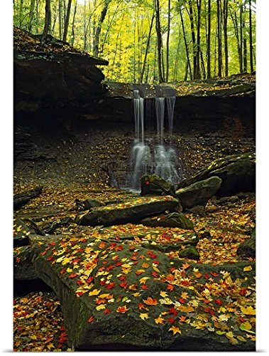 GREATBIGCANVAS Entitled Waterfall in a Forest, Blue Hen Falls, Cuyahoga Valley National Park, Ohio Poster Print, 16