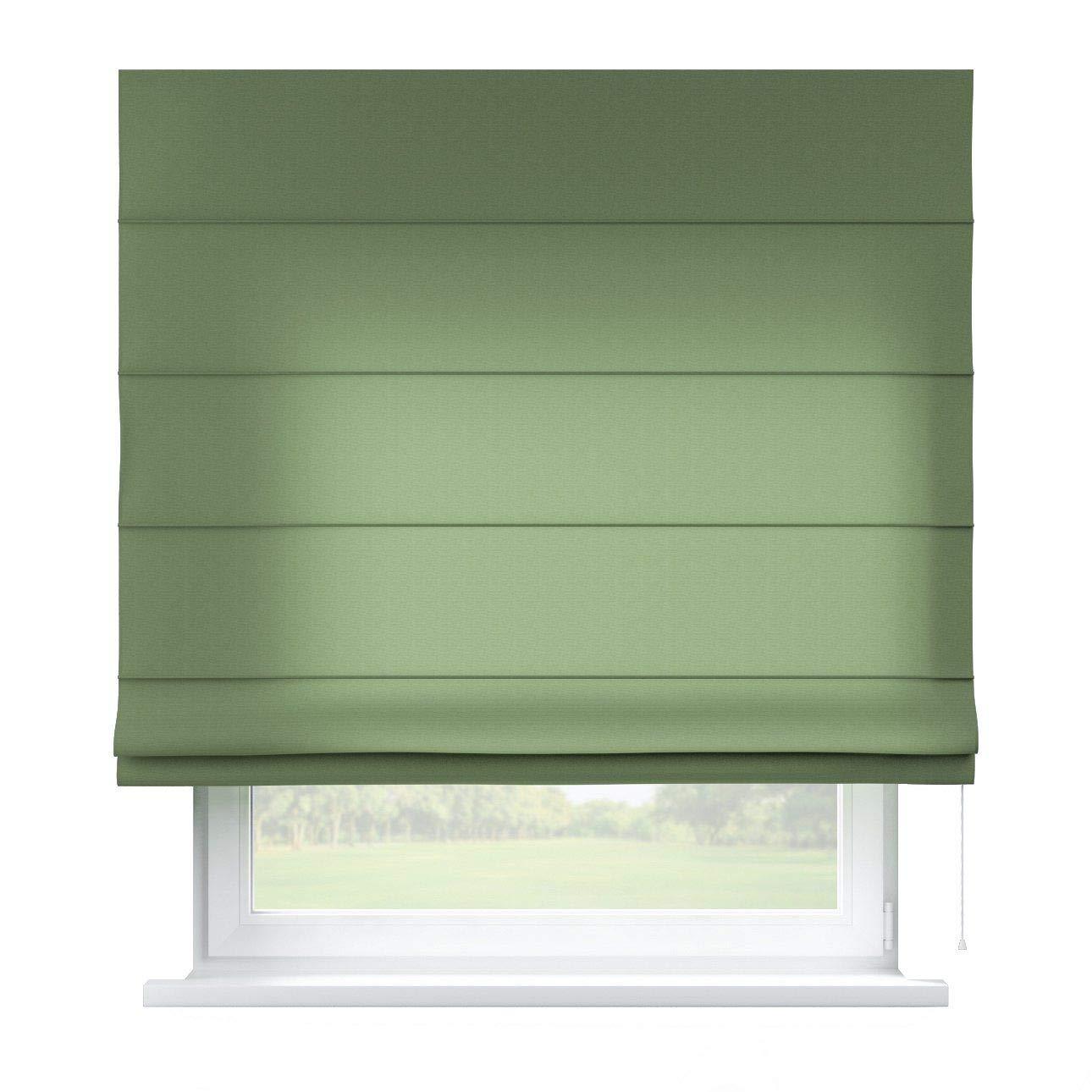 Dekoria Raffrollo Capri ohne Bohren Blickdicht Faltvorhang Raffgardine Wohnzimmer Schlafzimmer Kinderzimmer 160 × 170 cm grün Raffrollos auf Maß maßanfertigung möglich